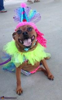 Circus Clown Dog Costume