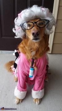 Crazy Cat Lady Dog Costume