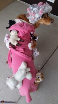 Crazy Cat Lady Dog Costume - Photo 3/3