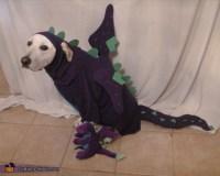 Homemade Dragon Dog Costume