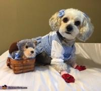 Dorothy & Toto Dog Costume