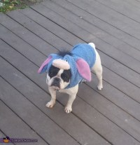 Eeyore Dog Costume