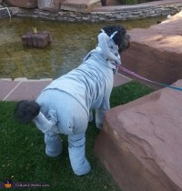 Elephant Dog's Costume - Photo 2/3