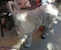 Elephant Dog's Costume - Photo 3/3
