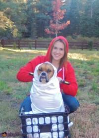 Quero viajar con my perro | Mediavida