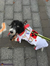 Elvis Dog Costume - Photo 6/8