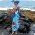 Seahorse costume photo 2 of 5