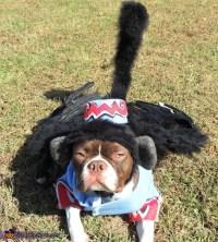 Flying Monkey Dog Costume - Photo 2/3