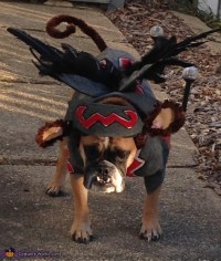 Flying Monkey Dog Costume DIY
