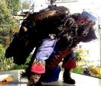 Flying Monkey Dog's Costume