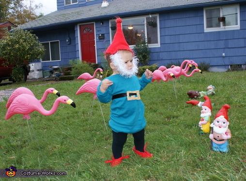 Homemade Garden Gnome Costume Photo 2 3