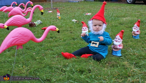 Homemade Garden Gnome Costume Photo 3 3