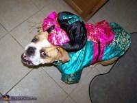Geisha Girl Dog Costume