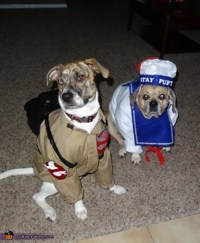 Ghostbusters Dog Costumes