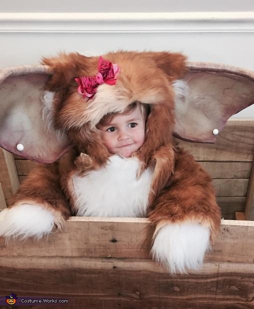 Gizmo Baby Halloween Costume