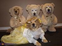 Goldilocks and the Three Bears Dogs Costume
