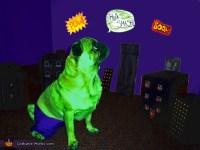 Hulk Dog's Costume - Photo 4/4