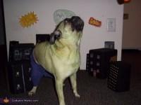 Hulk Dog's Costume - Photo 3/4