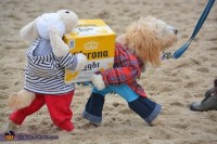 Dogs Carrying a Box of Corona Beer Costume - Photo 2/6