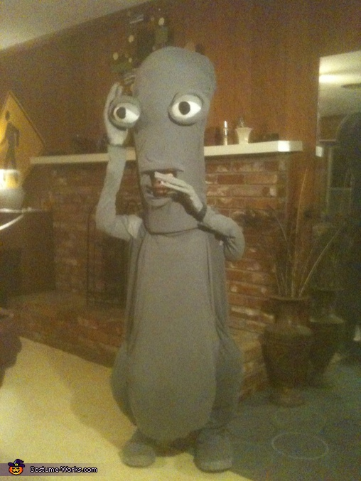 American Dad Character Roger the Alien costume  Photo 22