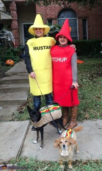 Ketchup Mustard and Hot Dogs Halloween Costume