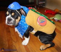 Kosher Dog Costume - Photo 2/5