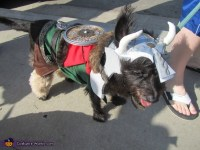 Leif Eriksson the Viking - Costume for Dogs - Photo 3/3