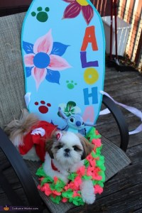 Lilo and Stitch Dog Costume