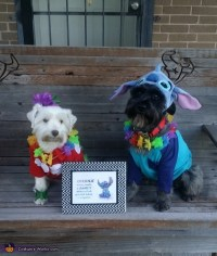 Lilo & Stitch Dogs Costume
