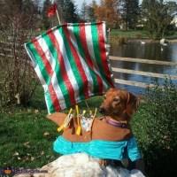Viking Longship Dog Costume