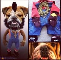 Mr T Doggie Dog - Costume - Photo 2/2