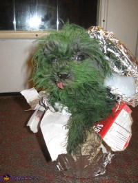Oscar the Grouch Dog Halloween Costume