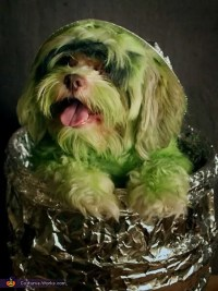 Poodle Oscar the Grouch Dog Costume