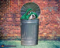 Oscar the Grouch Dogs Halloween Costume - Photo 3/3