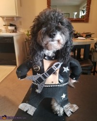 Paul Stanley from KISS Dog Costume