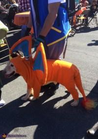 Pokemon Dog Costume