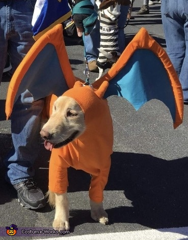 Pokemon Charizard Dog Costume