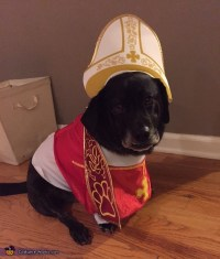 Pope Lucky Dog's Costume Idea