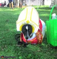 Pope Dog Halloween Costume