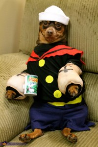 Popeye and Friends Dogs Costumes - Photo 4/5