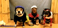 Popeye, Olive Oyl and Brutus - Costumes for Dogs - Photo 5/5