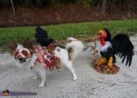 Homemade Roadkill Zombie Dog Costume