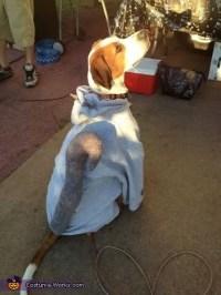 Squirrel Dog Costume - Photo 2/2