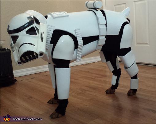 Stormtrooper Dog Costume
