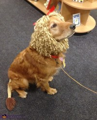 The Cowardly Lion Dog's Costume