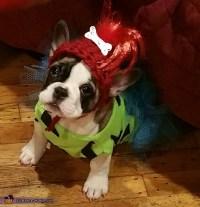 The Flintstones Dogs Costume - Photo 3/3