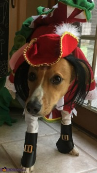 Tick Tock Croc chasing Captain Hook Dog Costume - Photo 4/6
