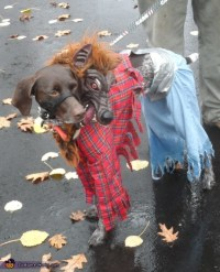 Two Headed Werewolf Dog Costume
