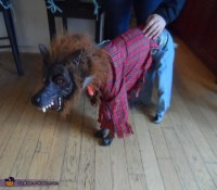 Two Headed Werewolf Dog Costume - Photo 2/2