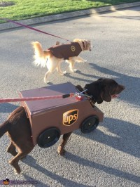UPS Package Car and Driver Dogs Costume